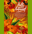 hello autumn poster with pumpkin and corn harvest vector image vector image
