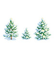 little snow-covered pine tree and two fir trees vector image vector image