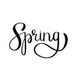 spring brush lettering vector image