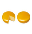 yellow cheese head realistic vector image vector image