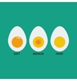 Boiled eggs vector image