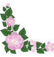 branch of rose vector image