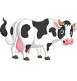 cartoon happy cow posing isolated vector image vector image
