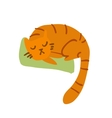 Cartoon sleeping awesome cat mascot vector image vector image