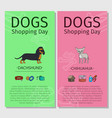 dachshund chihuahua dog shopping day vector image vector image