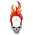 human skull with flames and fire vector image vector image