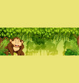 moneky in jungle scene vector image