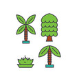 palm tree line icon concept palm tree flat vector image