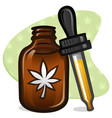 cbd oil dropper vector image vector image