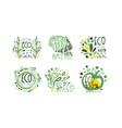 eco natural labels and logos original design vector image vector image
