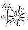 Firework black vector image