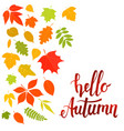 hello autumn leaves vector image