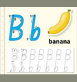 letter b tracing alphabet worksheets vector image