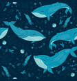 marine seamless pattern with whales graphics vector image