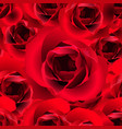 Red roses seamless pattern vector image