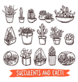Succulents And Cacti Sketch Set vector image vector image