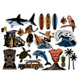 summer paradise surfing vintage retro set icons vector image