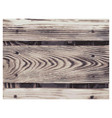 wood texture color wooden planks pattern overlay vector image vector image