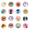 seamless background with dogs icon flat vector image