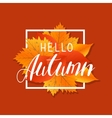 Autumn new season hello Lettering with hand drawn vector image vector image