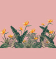 bird paradise flowers on pink background vector image