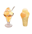 Caramel Ice Cream vector image