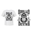 gorilla print t-shirt mockup boxing fight club vector image