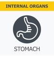 Internal organs - stomach vector image vector image