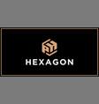 ph hexagon logo design inspiration vector image vector image