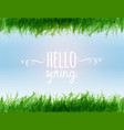typography composition with hello spring words vector image vector image