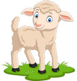 cartoon happy lamb on grass vector image vector image