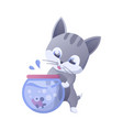 kitty house domestic cat in vector image vector image