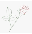 Sketched rose vector image