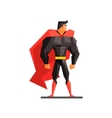 Superhero on white background vector image vector image