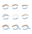 eyebrows shaping color icons set vector image vector image