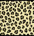 leopard color print pink background vector image