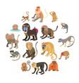 monkeys types icons set cartoon style vector image