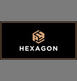 py hexagon logo design inspiration vector image vector image