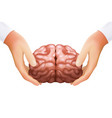 Science concept hands holding human brain mind