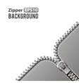 Silver zipper background vector image vector image