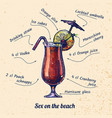 cocktail sex on the beach vector image vector image