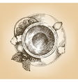Cup of tea with mint and lemon top view vector image vector image
