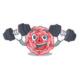 fitness carnation in the a character pot vector image vector image