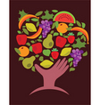 food and vegetables vector image vector image
