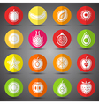 fruits icons3 vector image vector image