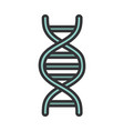 medical dna molecule genetic structure line and vector image vector image