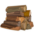 the logs of fire wood vector image