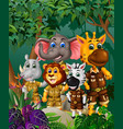 wildlife animals in tropical forest cartoon vector image vector image