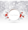 christmas background with holly vector image