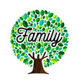 family tree concept for genealogy vector image vector image